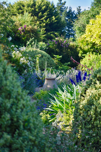 Spend a day learning the basics of garden design.