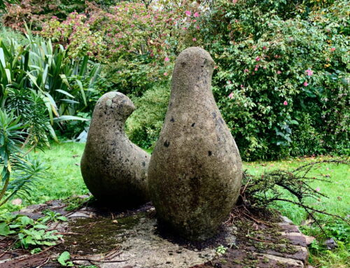 Head Gardener's Notes: An exciting winter project.